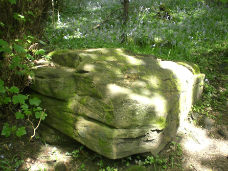 picture of stone at Bluebell Woods